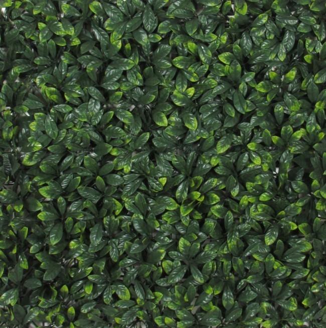 Siepe artificiale pitosforo in mattonelle arredo - Giardino artificiale ...