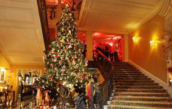 Albero di Natale artificiale 5 metri