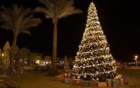 Albero di Natale artificiale 8 metri